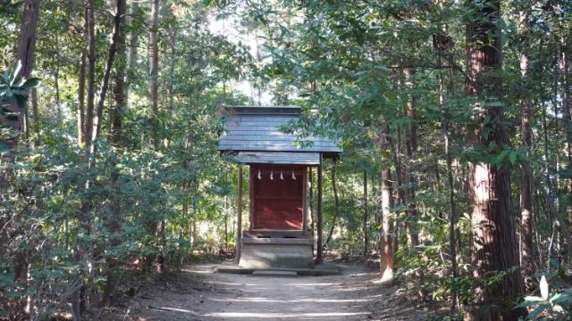 元旦の鷲宮神社。森の奥の神社。